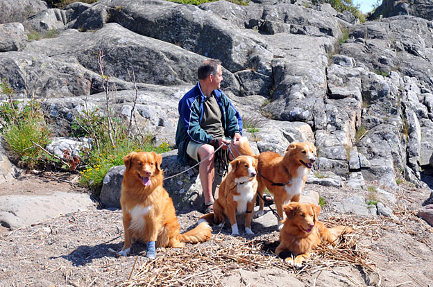 Roger with all the dogs